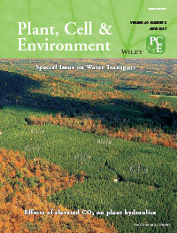 Plant Cell & Environment 40_6 cover